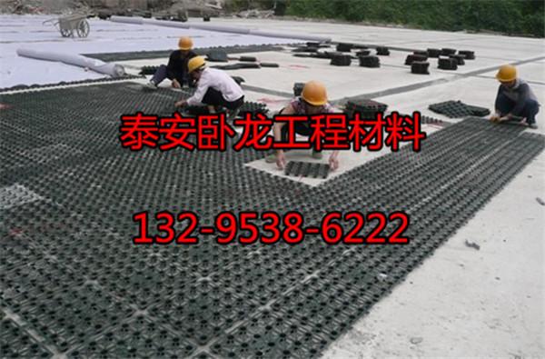 滨州蓄排水板价格低(比例)滨州蓄排水板厂中宝宝打印按天正图纸如何图片